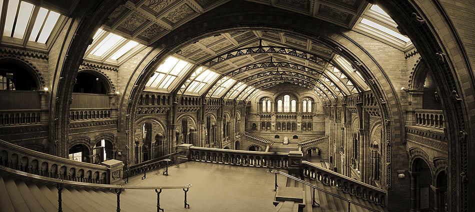 London. Natural History Museum. Alan Copson © 2010  www.alancopsonpictures.com